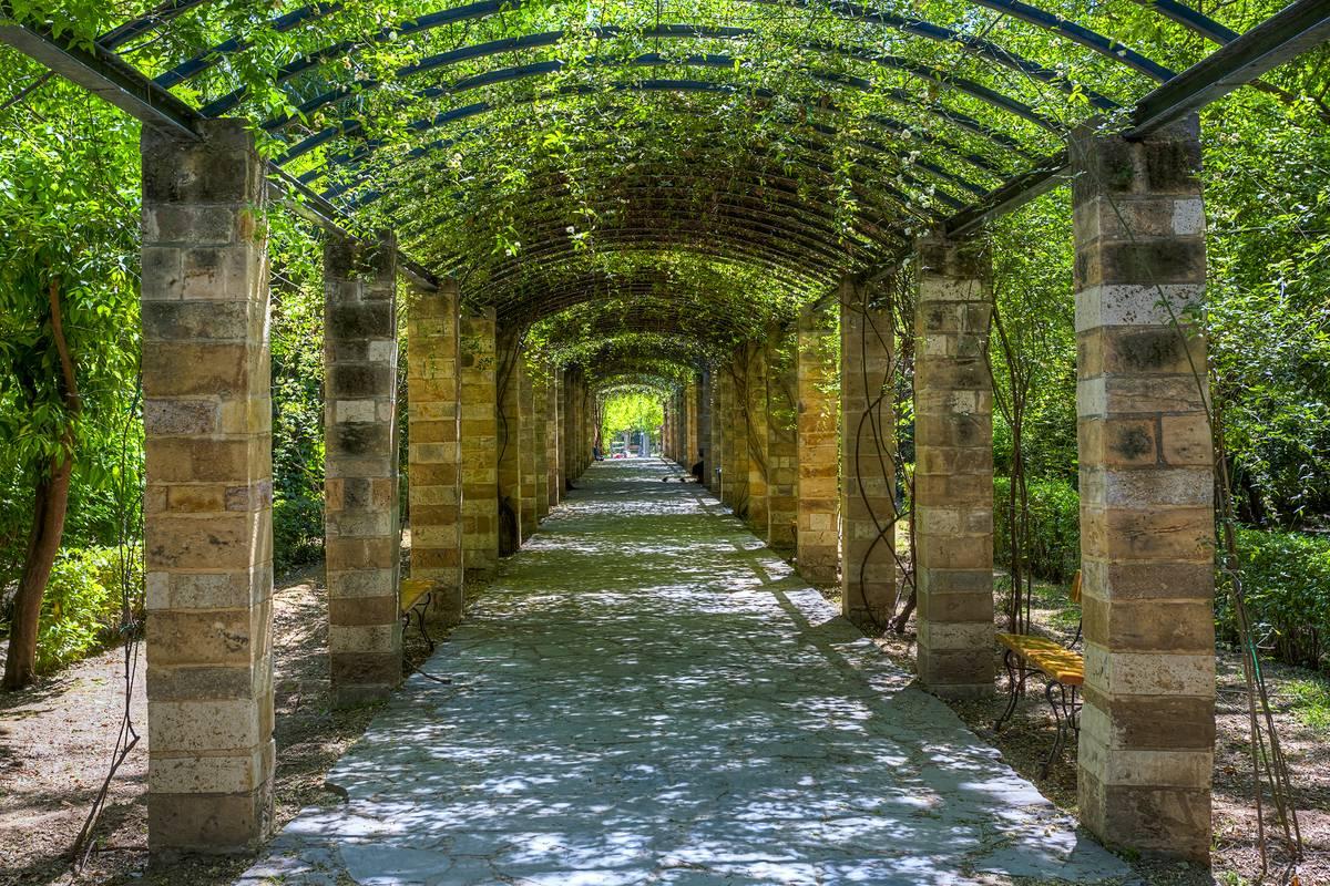 National Garden Athens Ruebarue