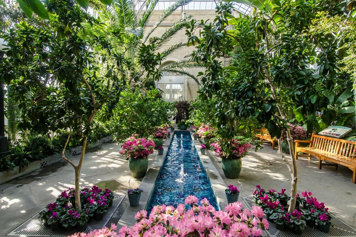 united states botanic garden - Us Botanic Garden