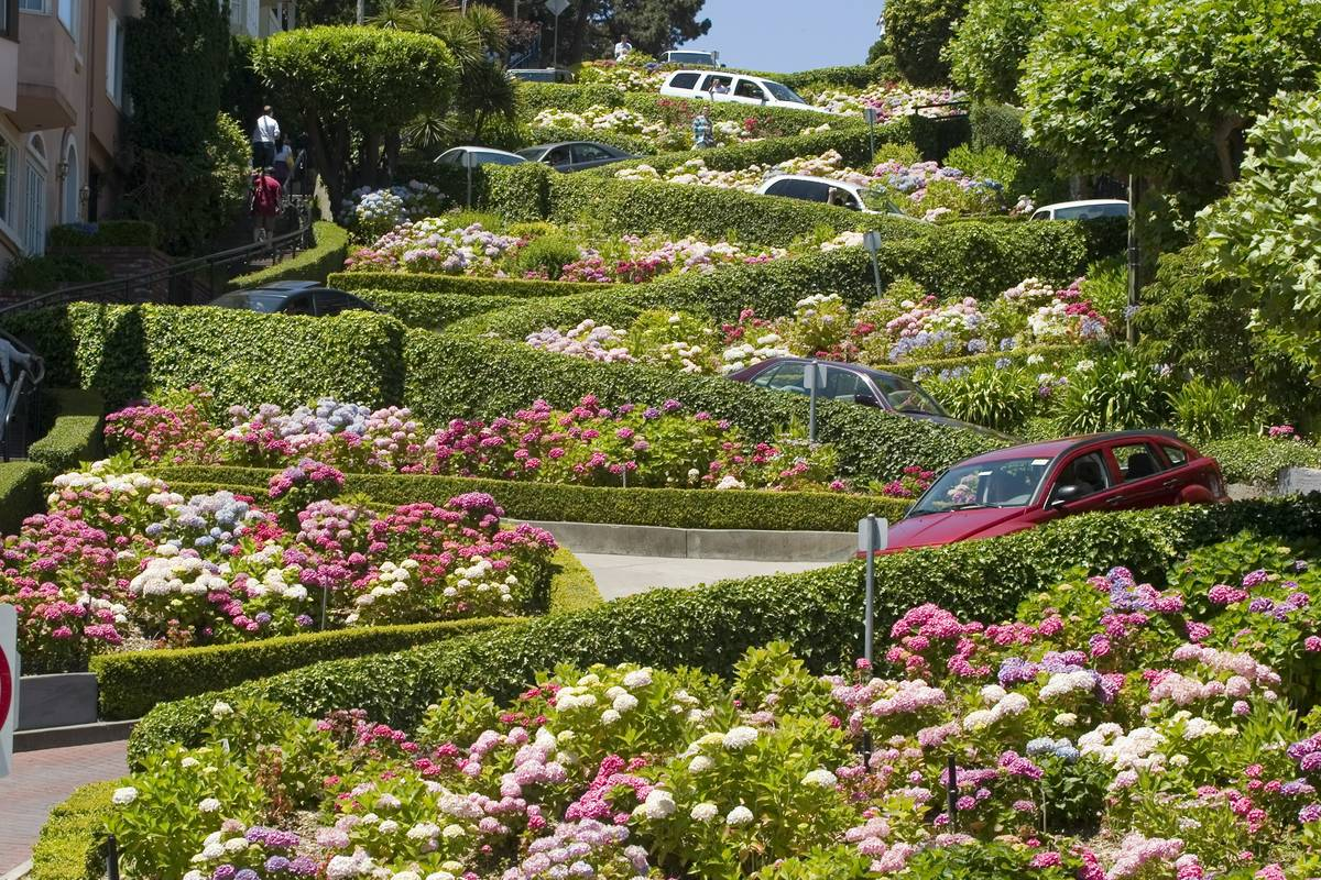 Assez Lombard Street, San Francisco - RueBaRue VJ35