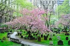 Trinity Churchyard