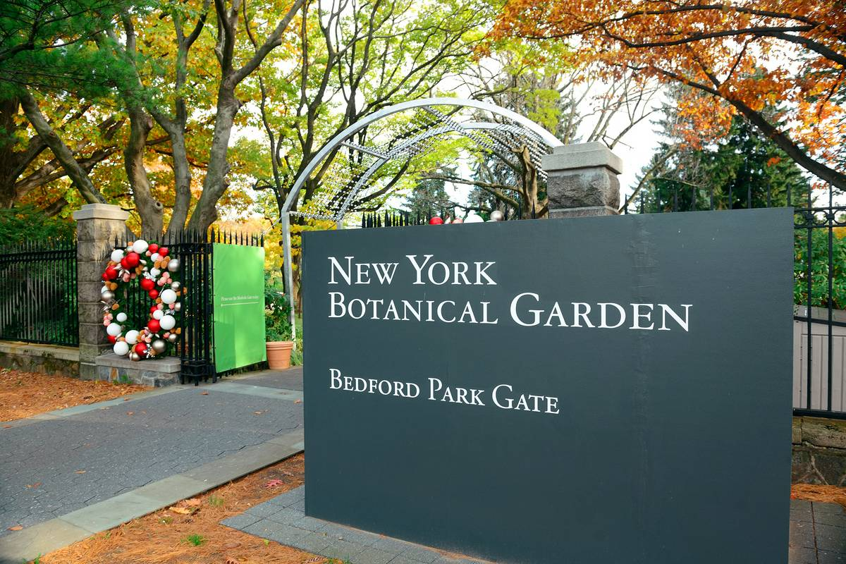 Coupons for bronx botanical garden